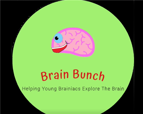 Brain Bunch