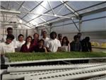 OHS Greenhouse